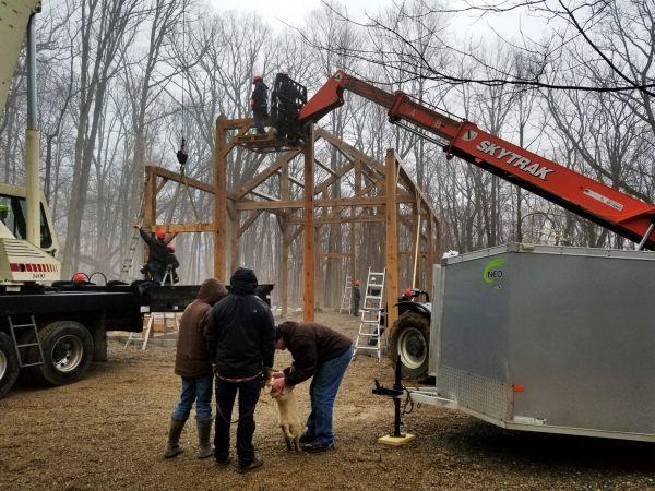 new timber frame 2